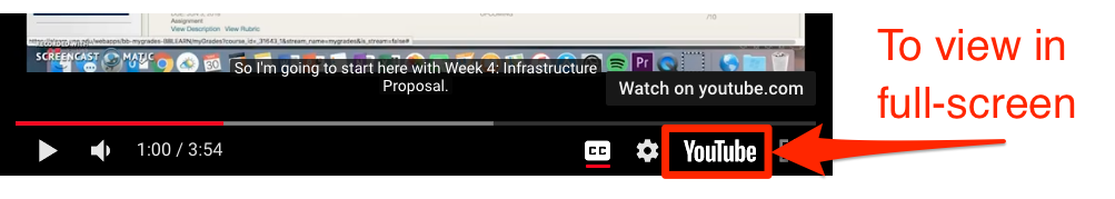 Youtube link in the bottom panel of youtube video frame