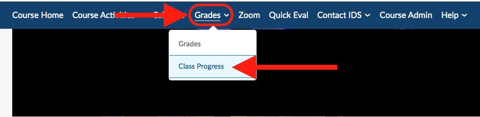 Screenshot of Grades and Class Progress
